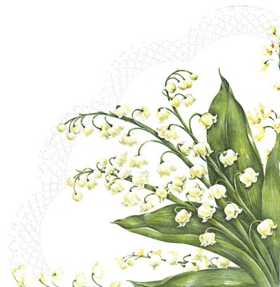 Festive may white – Rondo napkins